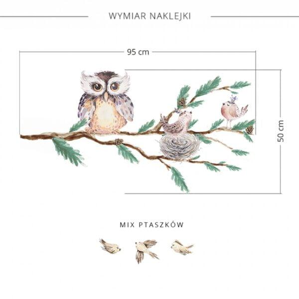 2 max 14 600x600 - Naklejka na ścianę gałąź z sową DK316
