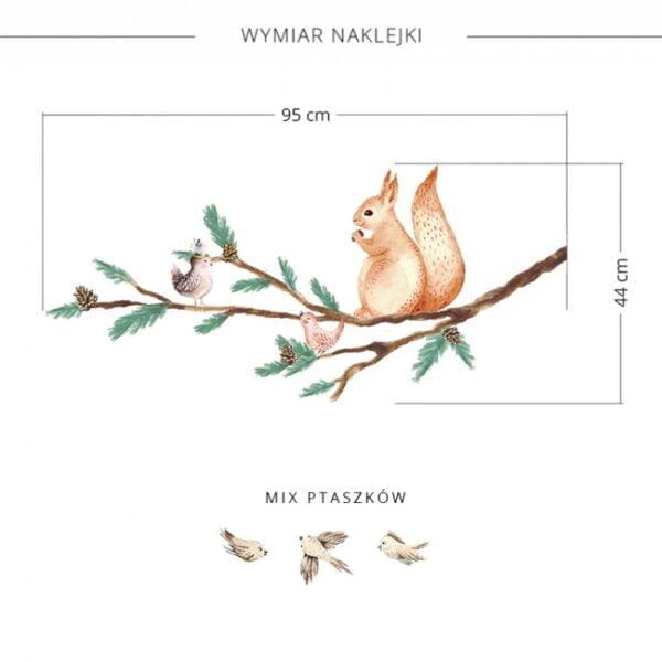 2 max 15 600x600 - Naklejka na ścianę gałąź z wiewiórką DK317