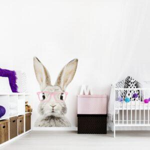 5 max 8 300x300 - Naklejka na ścianę królik w okularach