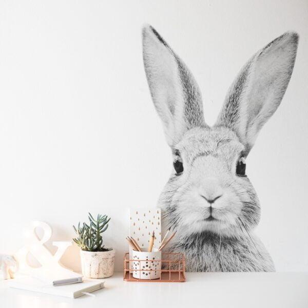 naklejka na ścianę czarno biały królik