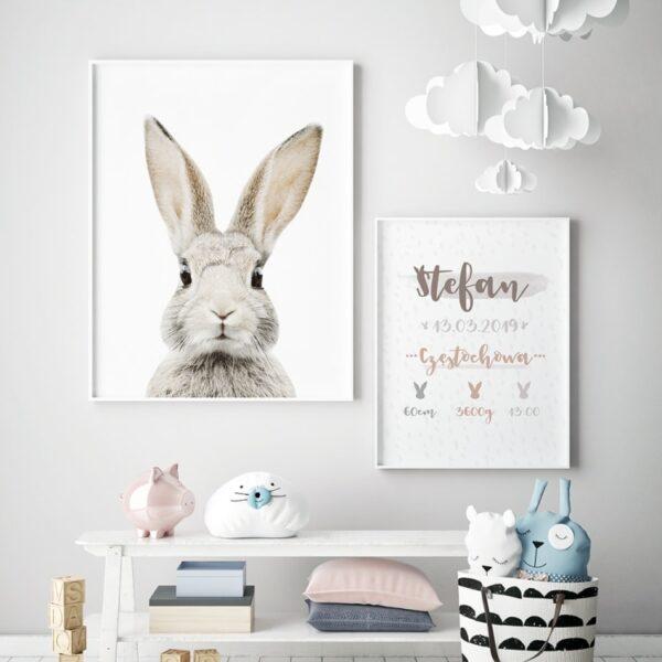 plakat z metryczką z motywem królika